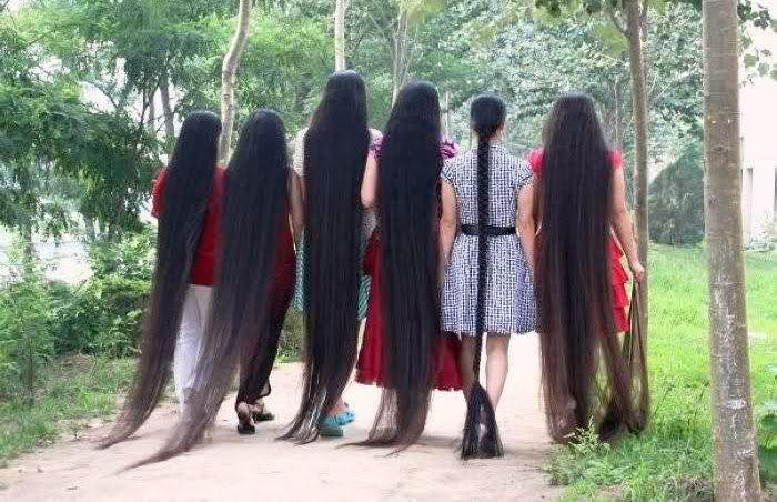 Long_hairlit04