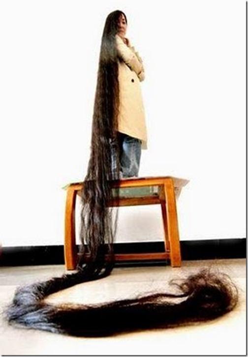 Long_hairlit09