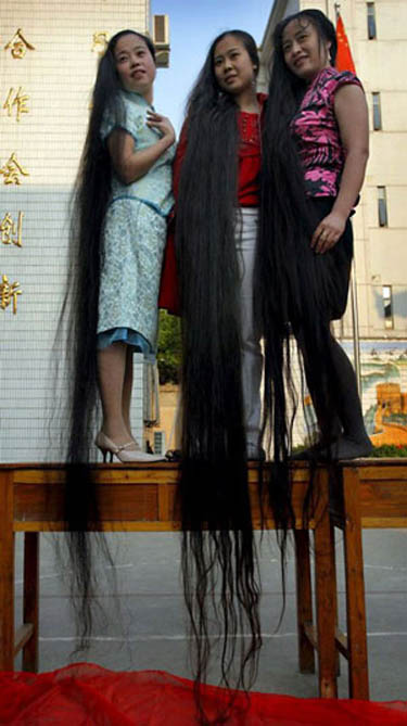 Long_hairlit10