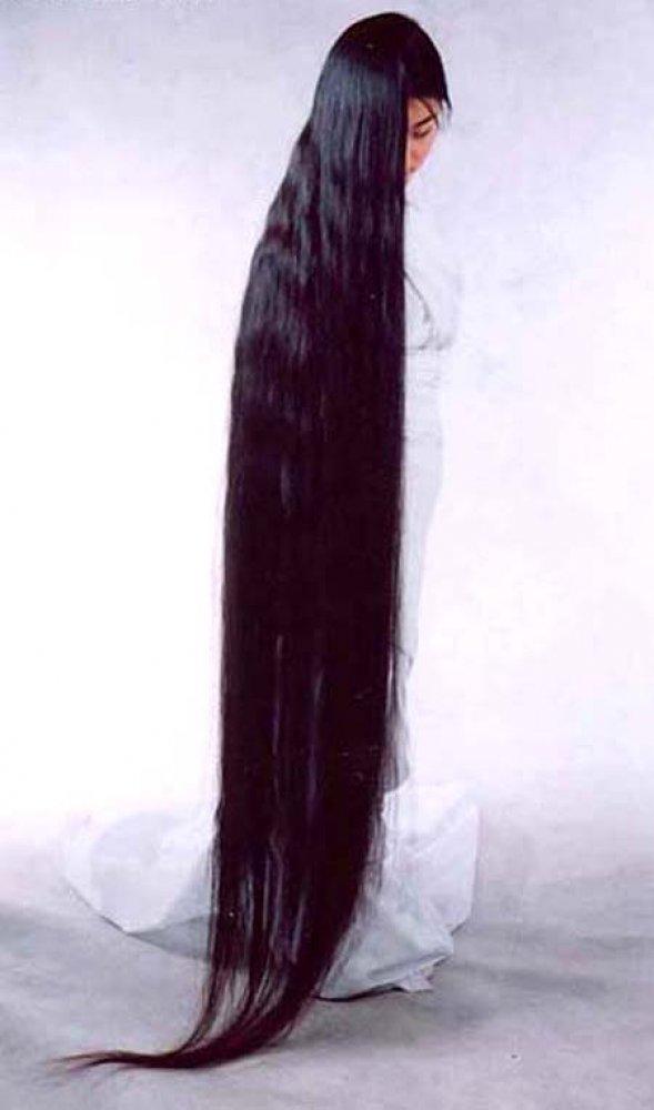 Long_hairlit11