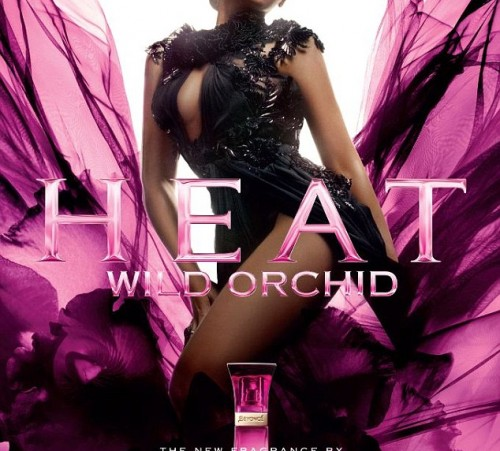 beyonce wild orchid