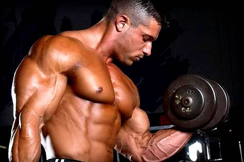 bodybuilder_physique
