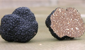 italian-food-excellence-truffles-black