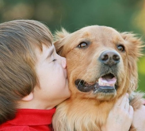 Interesting-Things-You-May-Not-Know-about-Dogs2