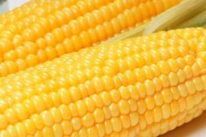 Corn-on-the-Cob1