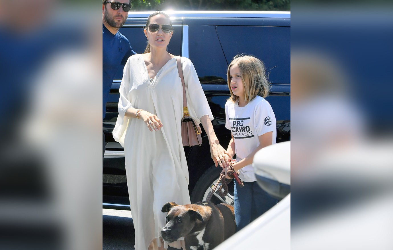 Angelina Jolie and Vivienne Jolie-Pitt head to a dog supply store in Los Angeles